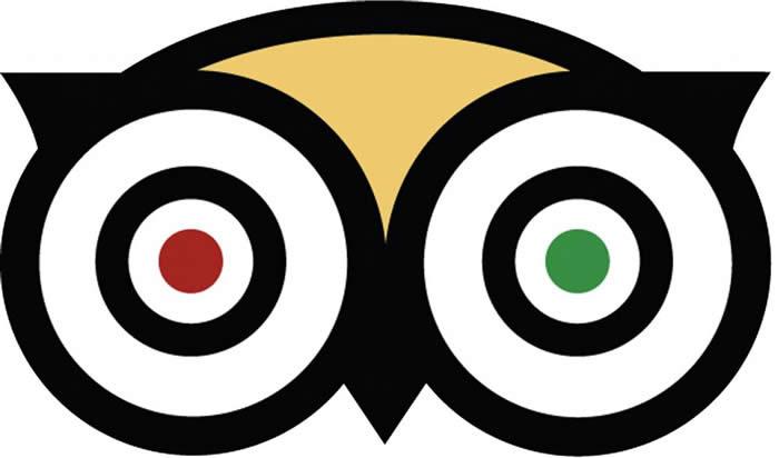 tripadvisor owl logo